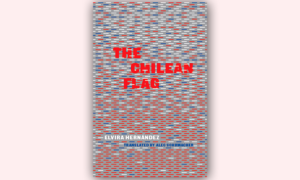 cover the chilean flag by Elvira Hernandez