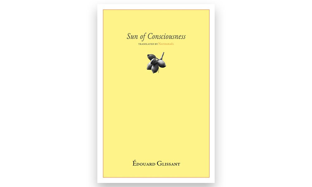 cover image for 'sun of consciousness'