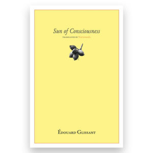 sun of consciousness image cover