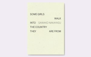 Cover image for 'Some Girls Walk Into The Country They Are From'