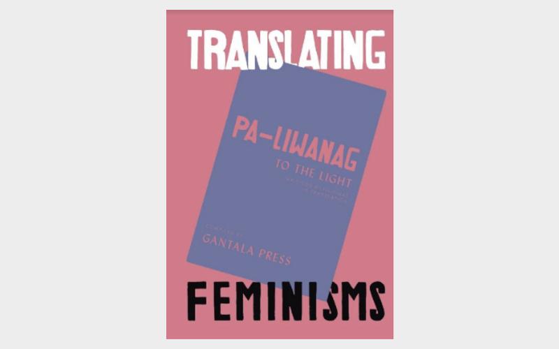 Cover of translating feminisms